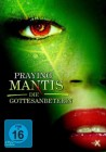 Praying Mantis - Die Gottesanbeterin