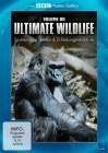 BBC Motion Gallery Ultimate Wildlife Vol. 6 Spielen und Lernen & Erfindungsreichtum